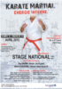 Stage_National_KM_avril2015_Visu-210x300.png